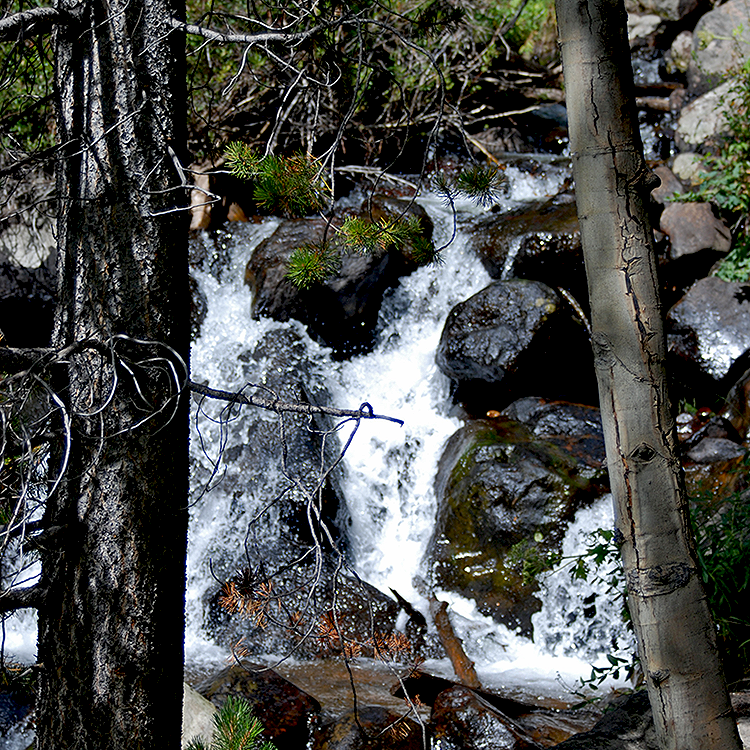 Mountain creek flowing over rocks forming a small waterfall